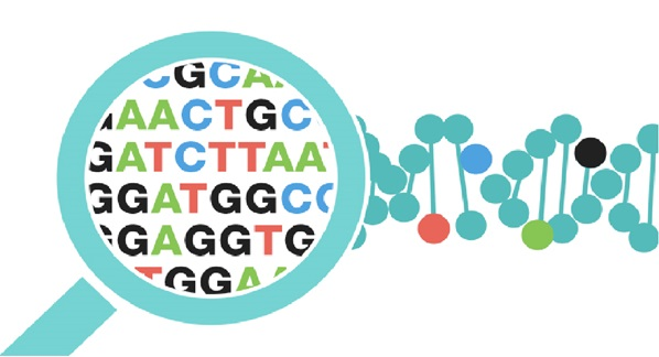 Sarah-Holme-human-genome-pharma