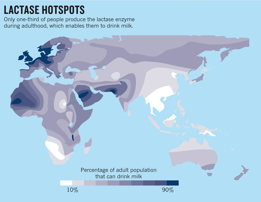lactase-hotspots2