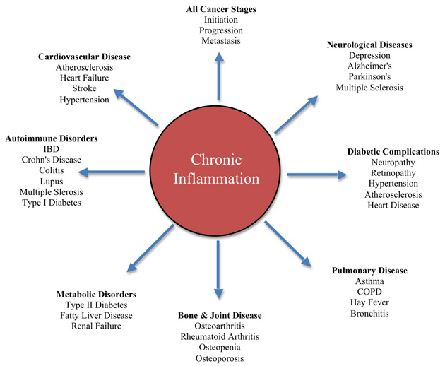 Chronic.Inflammation1